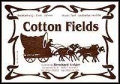 Cotton Fields - CCR