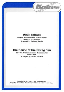 Dizzy Fingers / The house of the rising sun
