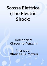 Scossa Elettrica (The Electric Shock)