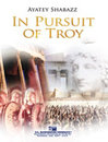 In Pursuit of Troy