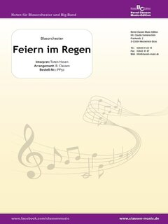 Feiern Im Regen Die Toten Hosen Translation In Dutch And Lyrics